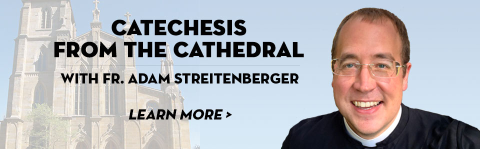 Catechesis from the Cathedral