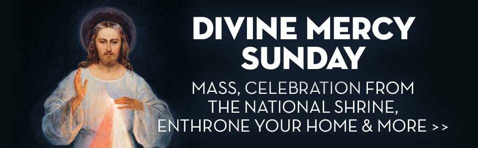 Divine Mercy Sunday Schedule