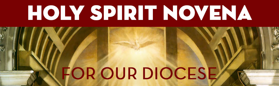 Symbol of the Holy Spirit for the Novena for the Diocese